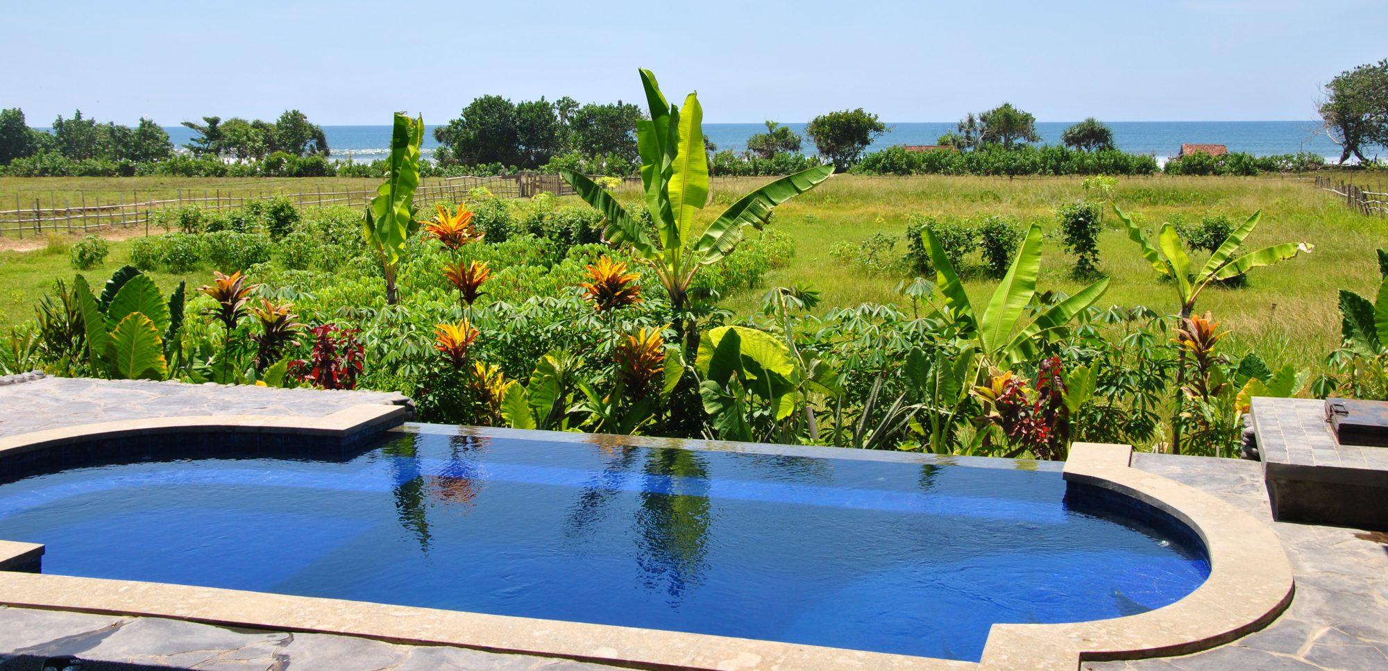 snaffl Bali
